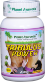 TRIBULUS POWER Kapsuly 500mg / ks